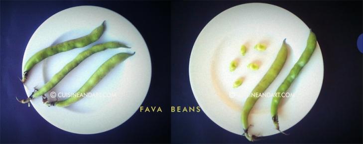 fava-beans-phone-diptych-ww