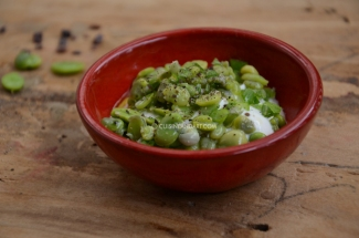 fava-beans-red1