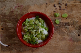 fava-beans-red2