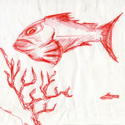 Jeff Midghall, untitled red fish