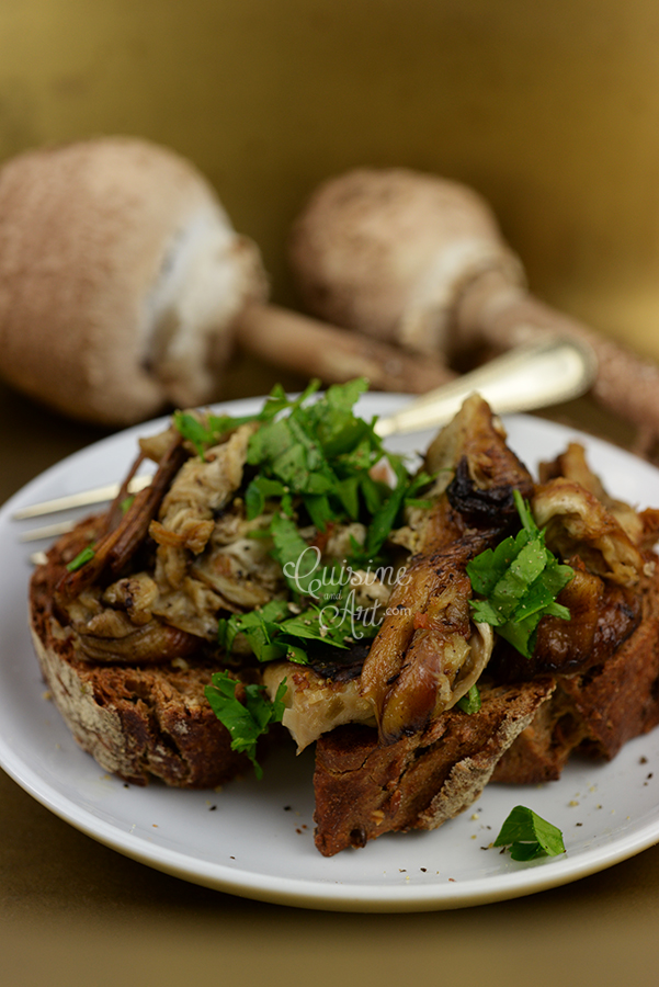 2010-11-06-About-Sasnal-forest-parasol-mushrooms-and-dry-stale-bread-by-Cuisine-And-Art